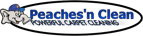 Peaches N Clean | Commercial Carpet Cleaning