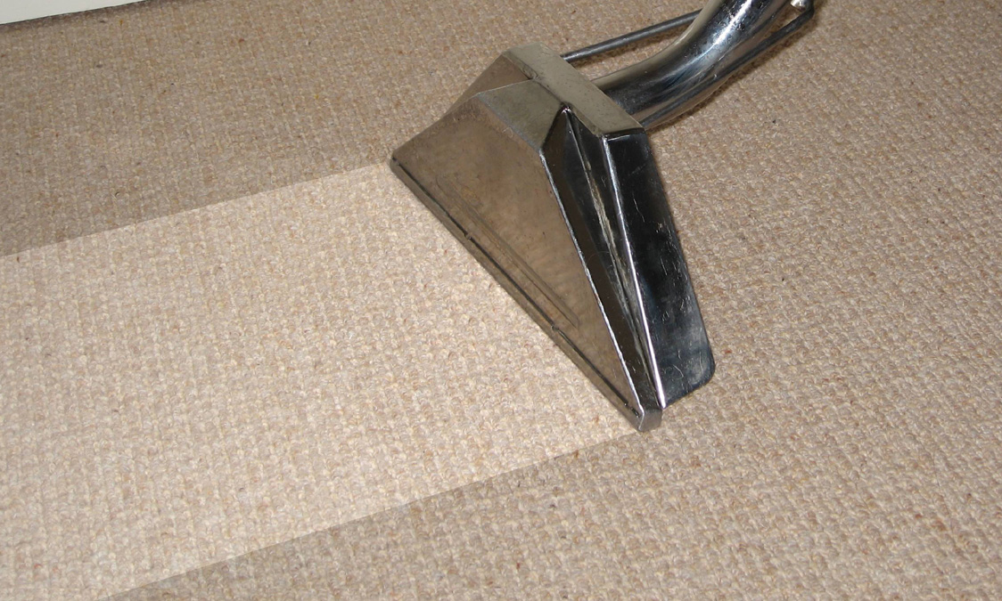 Carpet Cleaning Before and After 2