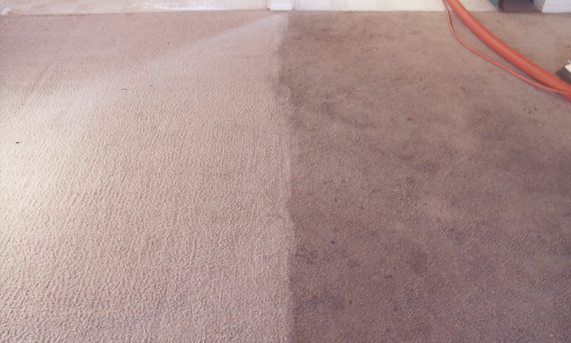 Carpet Cleaning Before and After 3